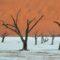 Fotowyprawa do Namibii 2019 – relacja